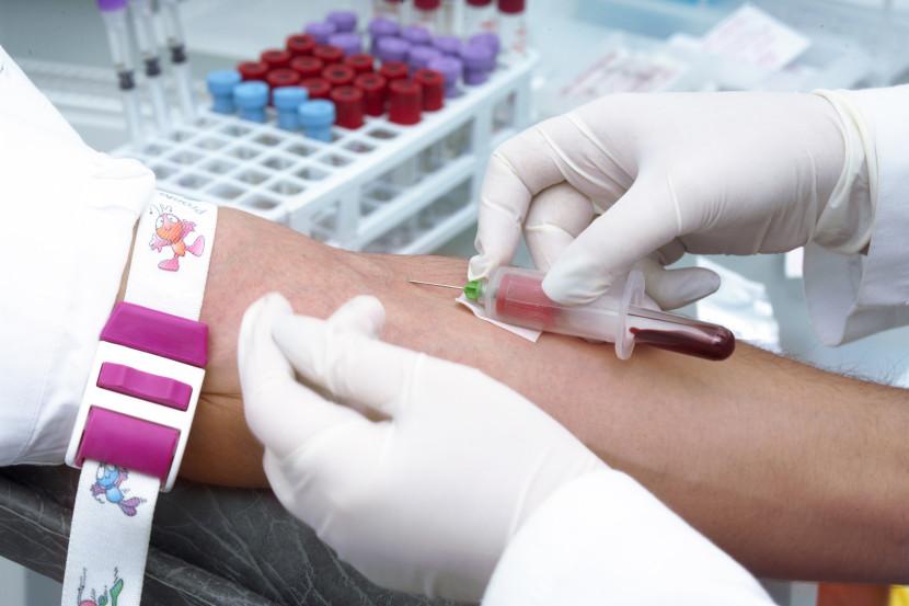 סרטן הדם לוקמיה