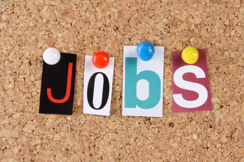 זכויות מובטלים ודורשי עבודה