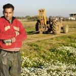עובד זר בעל זכויות בעבודה