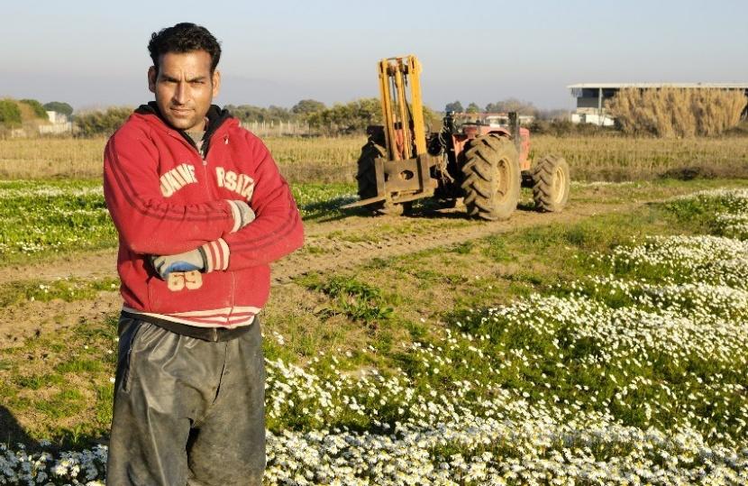 זכויות עובדים זרים