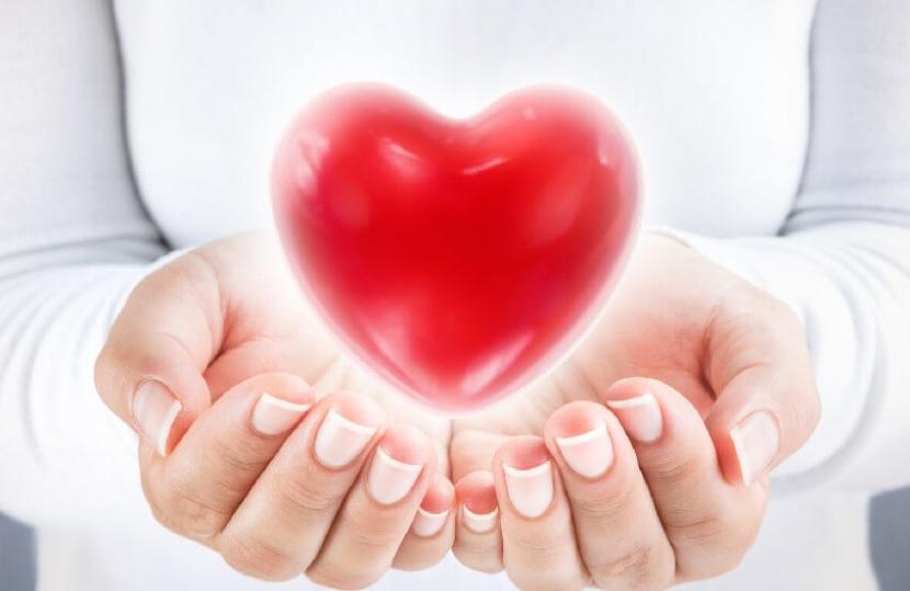 זכויות למושתלי לב