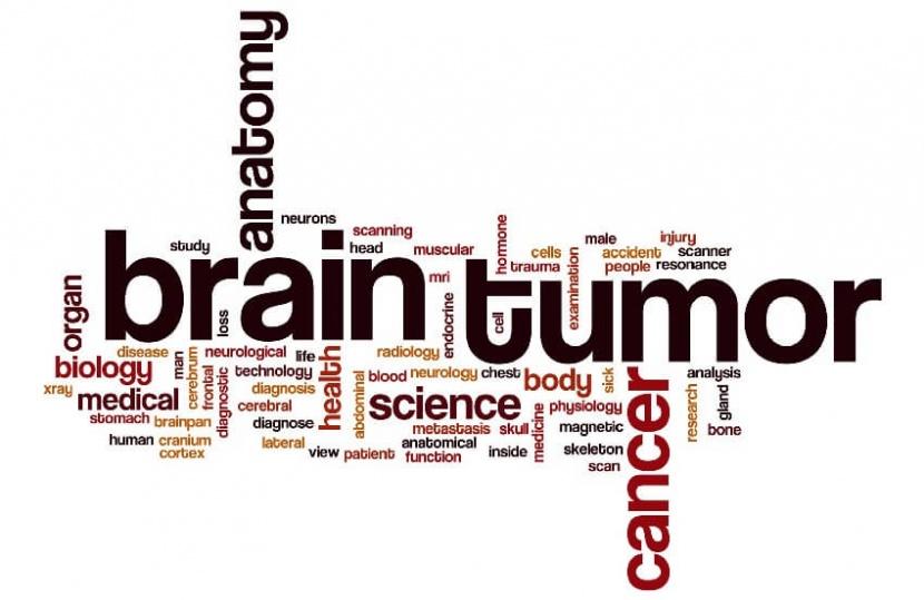 זכויות לחולים בגידול שפיר של המוח