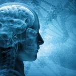 ראש של אדם שיש לו דלקחת חיידקית של קרום המוח
