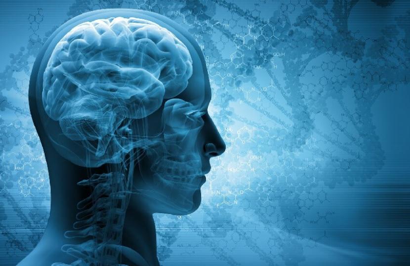 זכויות לחולים בדלקת חיידקית של קרום המוח